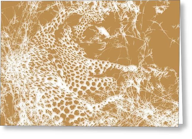 Leopard Greeting Card by Joe Hamilton