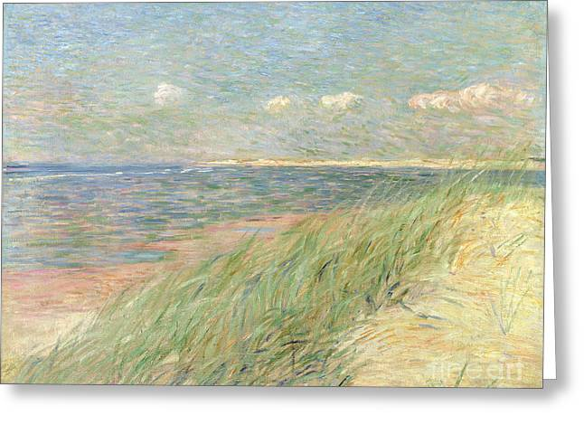 Sand Dunes Paintings Greeting Cards - Les Dunes du Zwin Knokke Greeting Card by Theo van Rysselberghe