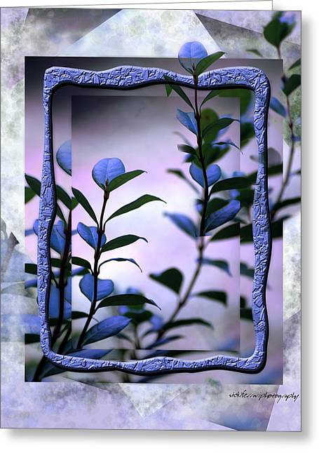 Trellis Greeting Cards - Let Free the Pain Greeting Card by Vicki Ferrari