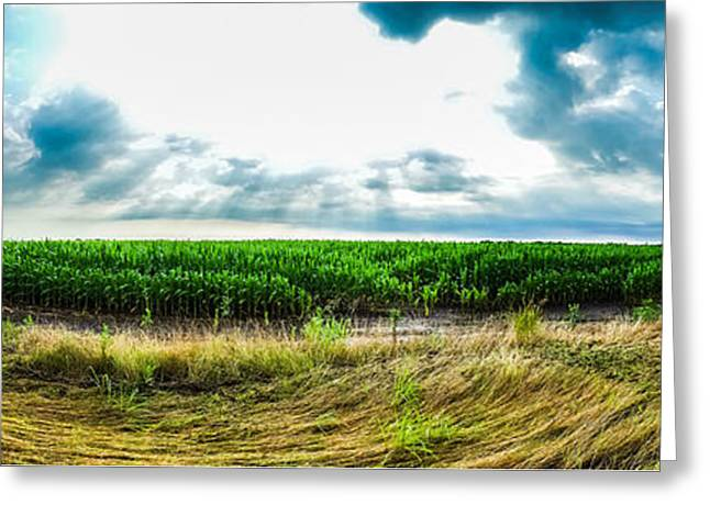 Storm Cloud On The Horizon Greeting Cards - Let It Grow Greeting Card by Warren Creech