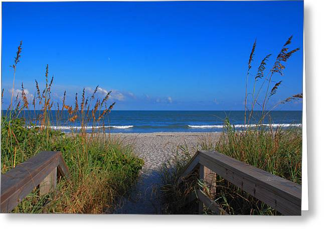 Lets go to the beach Greeting Card by Susanne Van Hulst