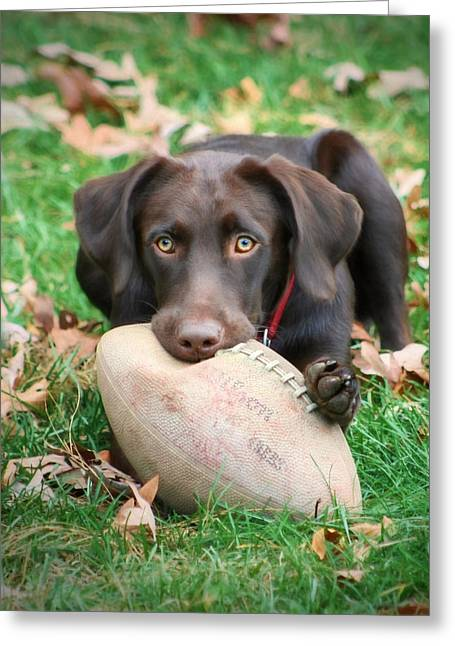 Let's Play Football Greeting Card by Lori Deiter
