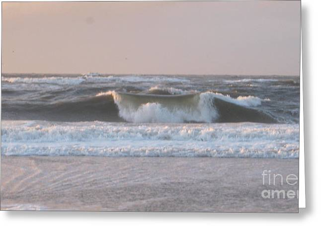 Beach Greeting Cards - Letting go Greeting Card by Heidi Sieber