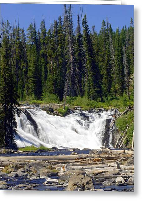 Lewis Falls Greeting Card by Marty Koch