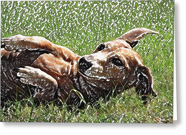 House Pet Greeting Cards - Lexie Girl Greeting Card by Lisa S Baker