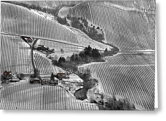 Winter Greeting Cards - Ley Lines Greeting Card by Matjaz Cater