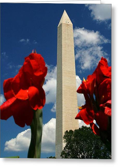 Washington Dc Greeting Cards - Liberty Greeting Card by Mitch Cat