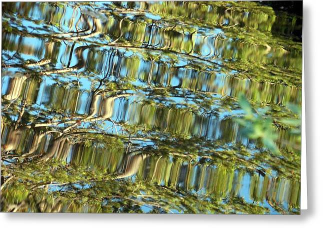 Reflections Of Sky In Water Greeting Cards - Library of the Sky Greeting Card by Chris Gudger