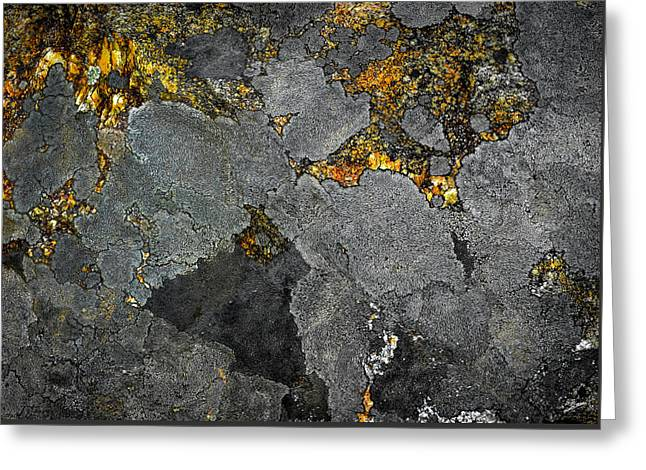 Lichen On Granite Rock Abstract Greeting Card by Donna Lee