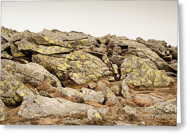Lichen On Stones Slabs Greeting Card by Arletta Cwalina