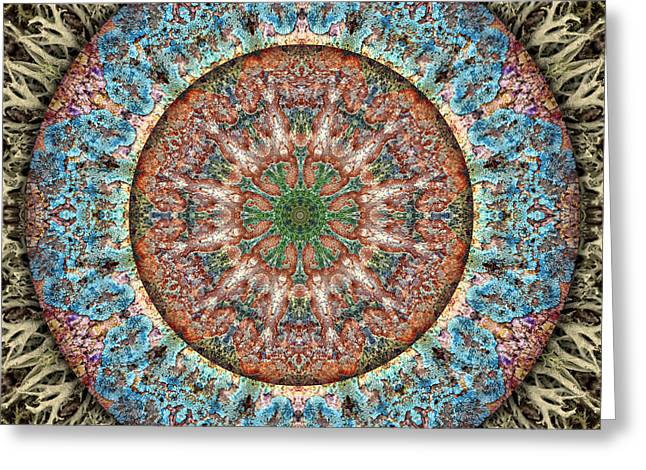 Photos Of Lichen Greeting Cards - Circle of Life Mandala - Lichen Stone Greeting Card by Becky Titus