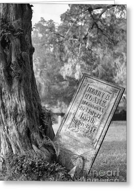 Headstones Greeting Cards - Life After Death Greeting Card by Richard Rizzo