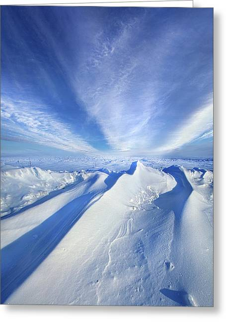 Life Below Zero Greeting Card by Phil Koch