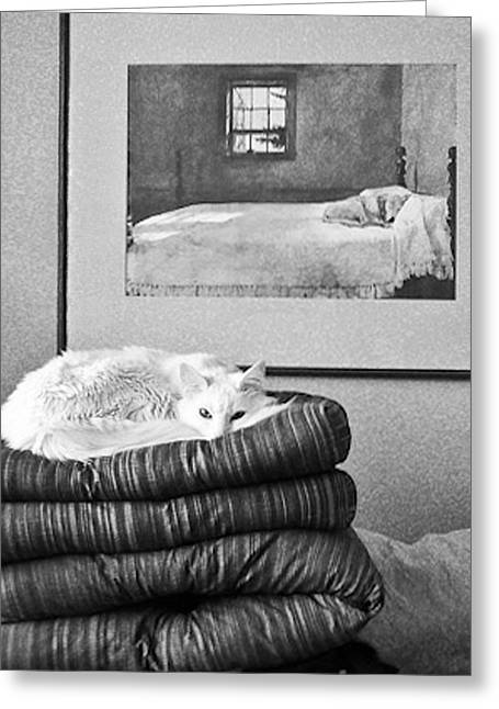 Cat Prints Photographs Greeting Cards - Life Imitates Art Greeting Card by Julie Niemela