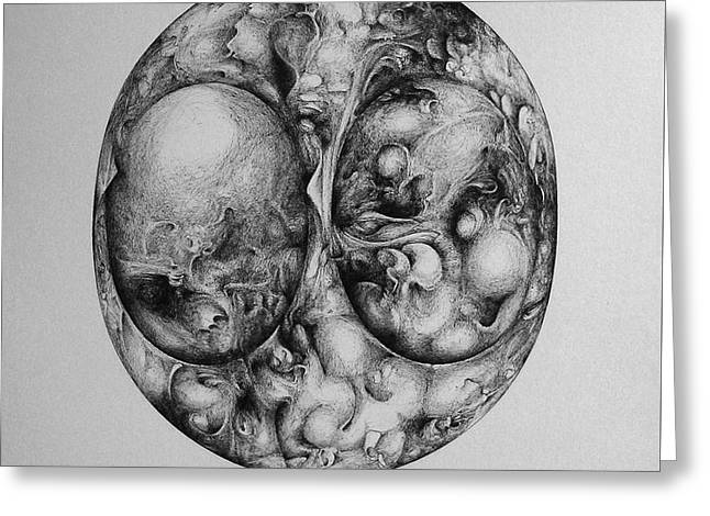 Ink Drawing Greeting Cards - Life Inside the Bean Greeting Card by Allen Linder