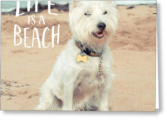 Life Is A Beach Dog Square Greeting Card by Edward Fielding