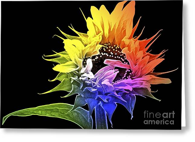 Yellow Sunflower Greeting Cards - Life is Like a Rainbow ... Greeting Card by Gwyn Newcombe