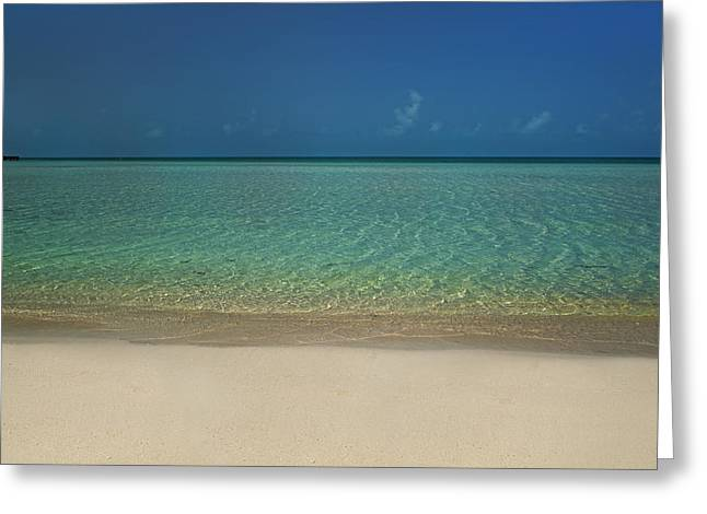 Carribean Greeting Cards - Lifes A Beach Greeting Card by Betsy C  Knapp