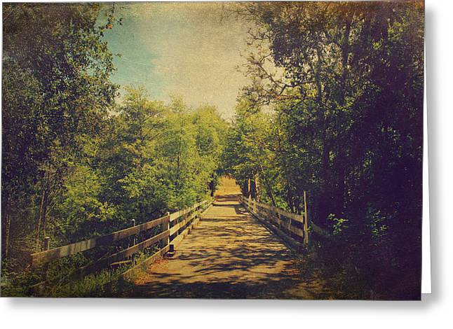 Lifetime Of Memories Greeting Card by Laurie Search