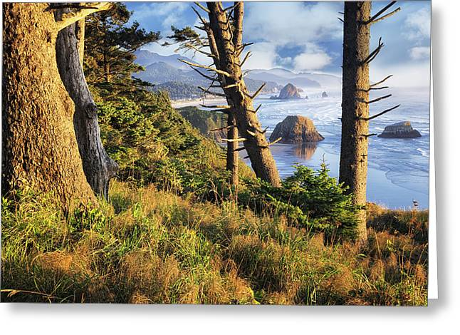 Foggy Ocean Greeting Cards - Lifting fog reveals evening light on Oregons Cannon Beach and Haystack Rock. Greeting Card by Larry  Geddis