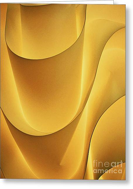 Light And Form I Greeting Card by Elizabeth Hoskinson