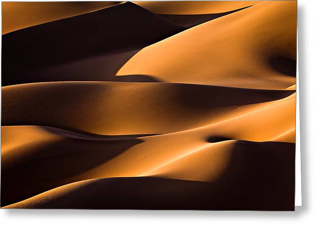 Desert Greeting Cards - Light And Shadow Greeting Card by Mohammadreza Momeni