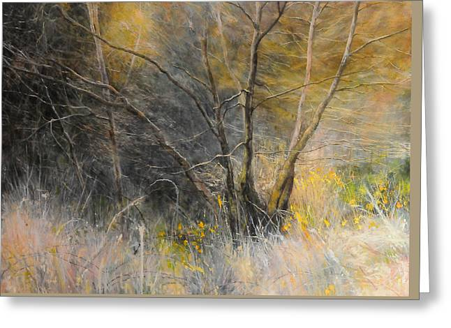 Light Behind Trees. Greeting Card by Harry Robertson