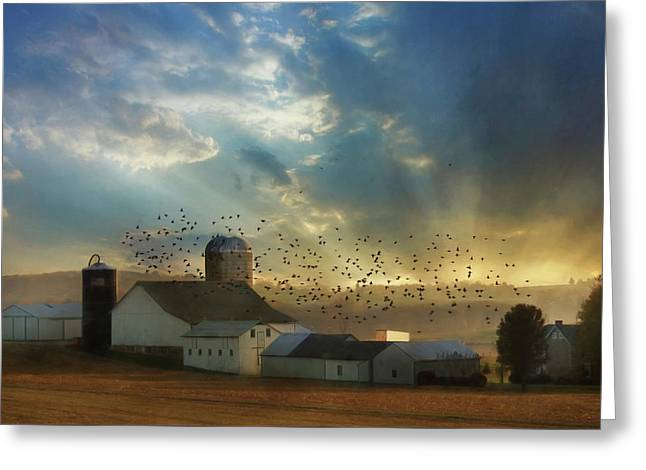 Light Of A New Day Greeting Card by Lori Deiter