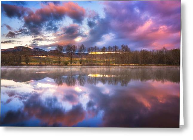 Light Of The Lake Greeting Card by Darren  White