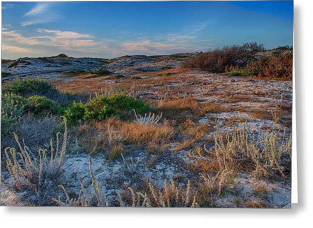 Evening Lights Greeting Cards - Light On The Dunes Greeting Card by Bill Roberts