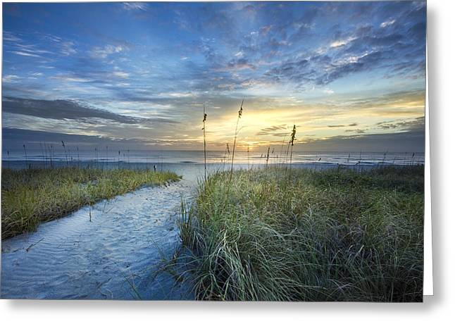 On The Beach Greeting Cards - Light on the Dunes Greeting Card by Debra and Dave Vanderlaan