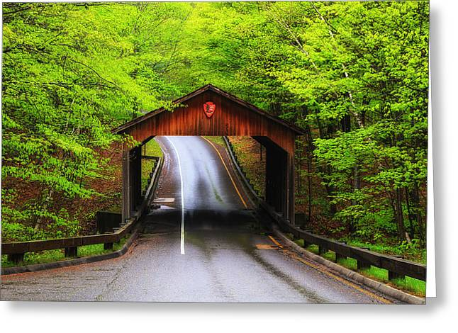 New Greeting Cards - Light Rain on Pierce Stocking Drive 2 Greeting Card by Rachel Cohen
