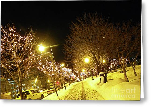 Snow Scene Landscape Greeting Cards - Light the Way Greeting Card by Elizabeth Hoskinson