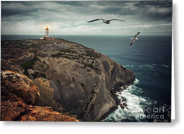 Gull Seagull Greeting Cards - Lighthouse Cliff Greeting Card by Carlos Caetano