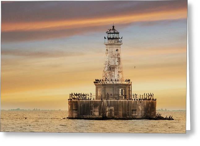 Nautical Birds Greeting Cards - Lighthouse Keepers Greeting Card by Lori Deiter