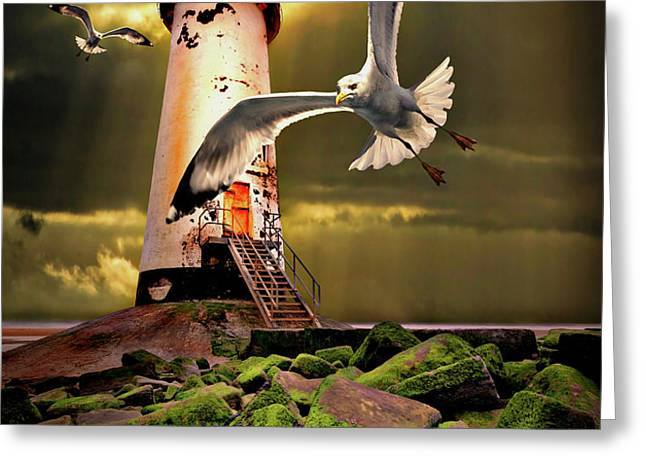 lighthouse with seagulls Greeting Card by Meirion Matthias