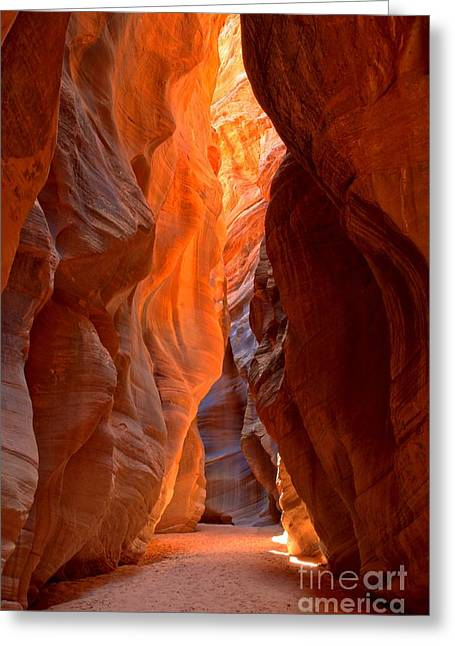 Utah Slot Canyon Greeting Cards - Lighting The Way Underground Greeting Card by Adam Jewell