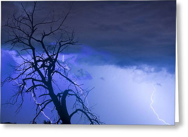 Lightning Bolt Pictures Greeting Cards - Lightning Tree Silhouette 38 Greeting Card by James BO  Insogna