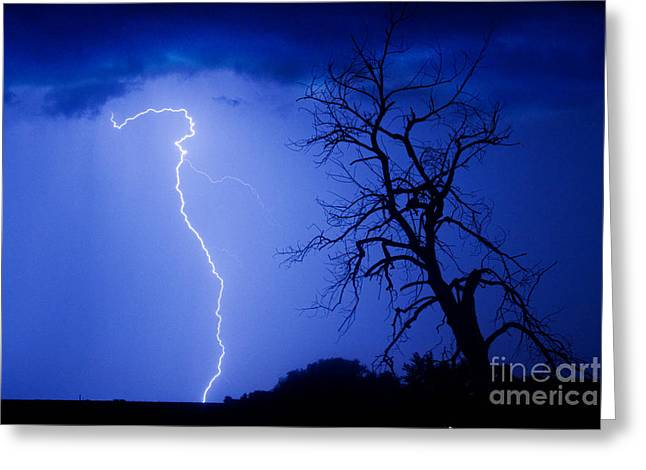Lightning Bolt Pictures Greeting Cards - Lightning Tree Silhouette Greeting Card by James BO  Insogna