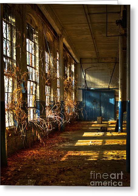 Glass Wall Photographs Greeting Cards - Lightroom too Mary Leila Cotton Mill 1899 Greeting Card by Reid Callaway
