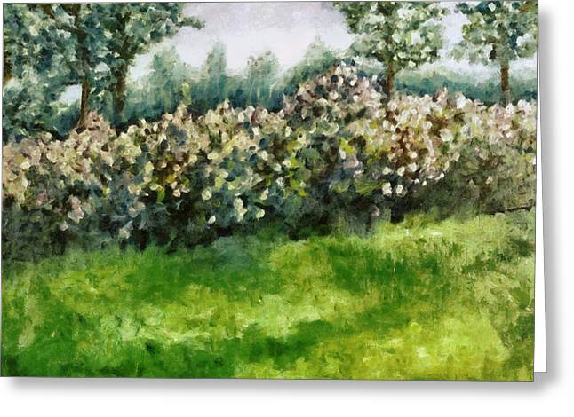 Lilac Bushes In Springtime Greeting Card by Michelle Calkins