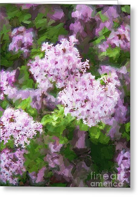 Lilac Lovelies Greeting Card by A New Focus Photography