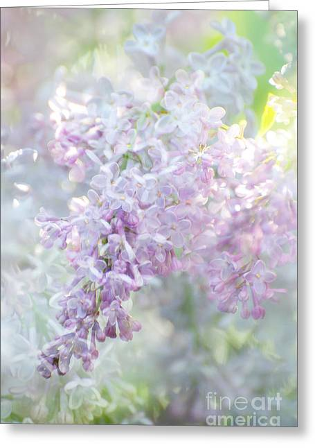 Award Mixed Media Greeting Cards - Lilacs in Bloom Greeting Card by ArtyZen Studios