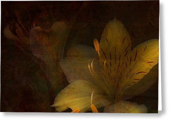 Soft Light Greeting Cards - Lilies II Greeting Card by Bonnie Bruno