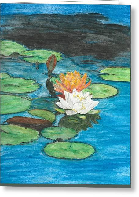 Algae Greeting Cards - Lilies Greeting Card by Tara Chant