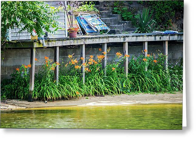 Lilies Under The Dock Greeting Card by Brian Wallace