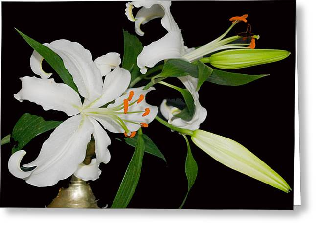 Lilies And Old Brass Greeting Card by Dave Byrne