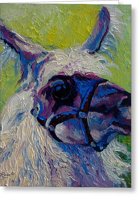 Lilloet - Llama Greeting Card by Marion Rose