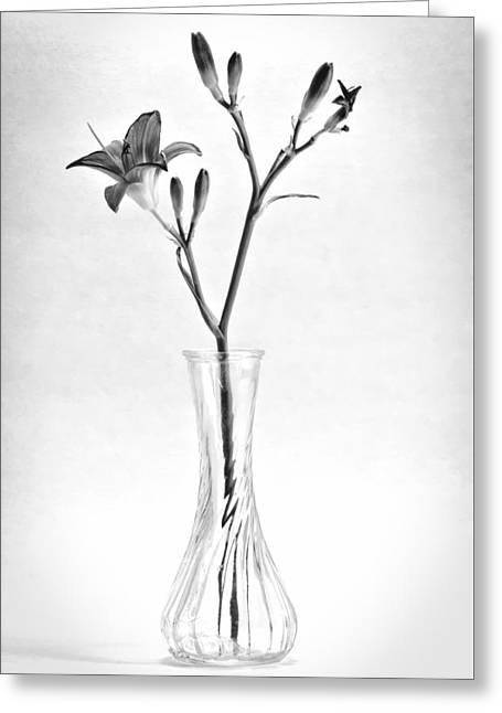 Glass Vase Greeting Cards - Lily Greeting Card by Kurt Golgart