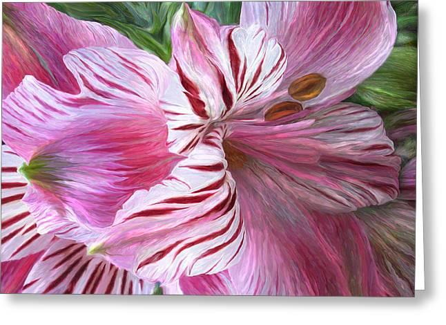Pink Flower Prints Greeting Cards - Lily Moods - Pink Greeting Card by Carol Cavalaris